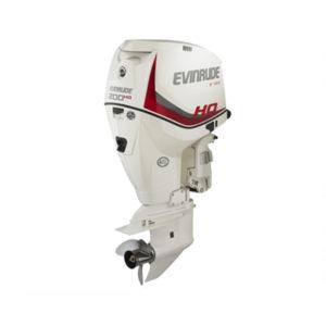 E-TEC 200 H.O.