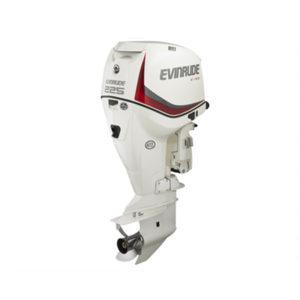 E-TEC 225 HP